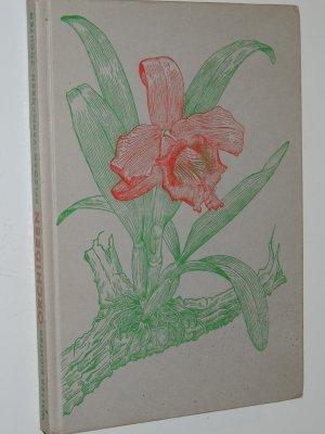 walter richter orchideen pflegen vermehren z chten. Black Bedroom Furniture Sets. Home Design Ideas