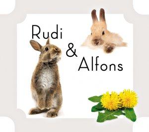Rudi & Alfons. Aus dem Leben zweier Hasenbrüder - Frisch, Andrea