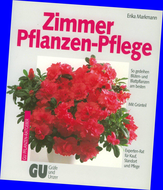 zimmerpflanzen pflege zimmerpflanzen f r wenig licht 21. Black Bedroom Furniture Sets. Home Design Ideas
