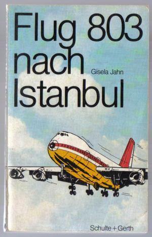 Flug 803 nach Istanbul