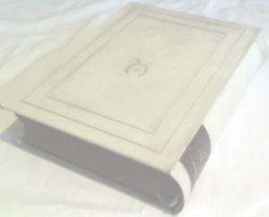 Jörn Uhl (1902). Vorzugsausgabe zum 100.Tsd. Pergamenteinband, Bütten, unbeschnitten.  (Pergament*)