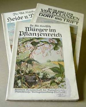Würger  im  Pflanzenreich.  /  Von  Pflanzen  zwischen  Dorf  und  Trift.  Ein  Buch  für  Schönheitssucher.  /  Durch  Heide  und  Moor.