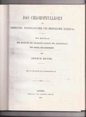 Das Chlorophyllkorn in chemischer, morphologischer und biologischer Beziehung: Ein Beitrag zur Kenntniss des Chlorophyllkornes der Angiospermen und seiner Metamorphosen