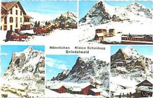 AK Color Männlichen Kleine Scheidegg Grindelwald Winter