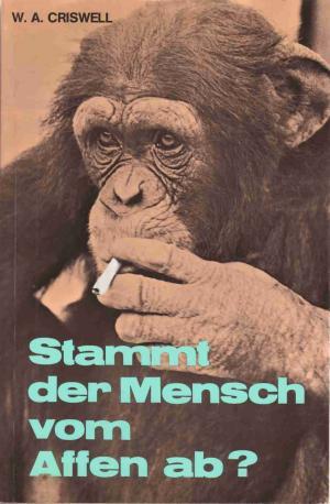 Mensch Stammt Vom Affen Ab