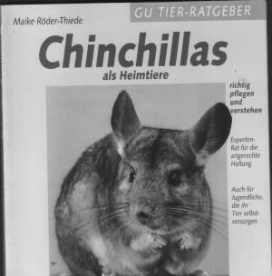 Chinchillas als Heimtiere - richtig pflegen und verstehen