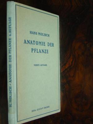 """Anatomie der Pflanze"""" (Hans Molisch) – Buch antiquarisch kaufen ..."""