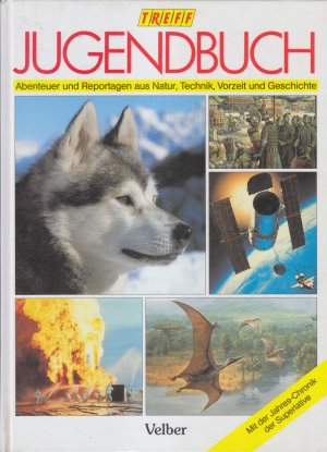 Treff Jugendbuch  1993- Abenteuer und Reportagen aus Natur, Technik, Vorzeit und Geschichte**