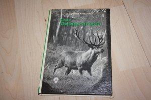 Der Geisterhirsch - Haselbusch, Günther