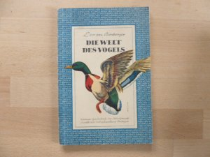 Die Welt des Vogels