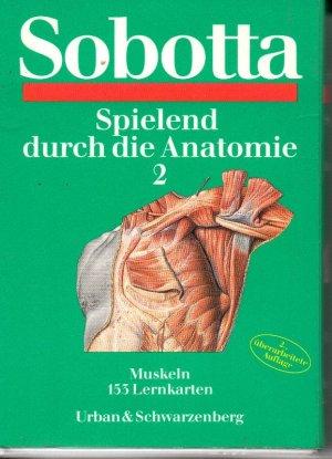 Spielend durch die Anatomie 2 - Muskeln - 153 Lernkarten - 2 ...