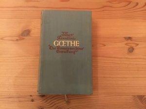 Goethe - Der Roman von seiner Erweckung