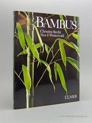 bambus recht christine max f buch gebraucht kaufen. Black Bedroom Furniture Sets. Home Design Ideas