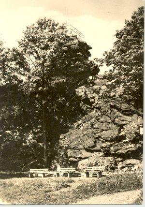 AK SW Schöneck Vogtland Alter Söll Aussichtspunkt Felsen Park Baum DDR um 1960