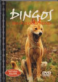 Dingos - Freund oder Feind - Natural Killers