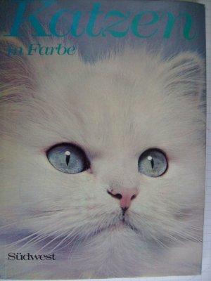 Bildtext: Katzen in Farbe. von Metcalf, Christine