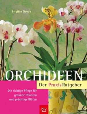 goede brigitte orchideen der praxis ratgeber b cher. Black Bedroom Furniture Sets. Home Design Ideas
