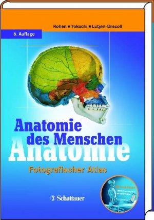 Anatomie des Menschen - Fotografischer Atlas der systematischen ...