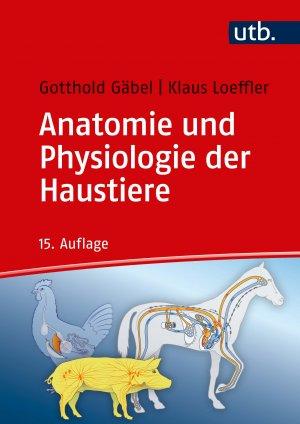 Gemütlich Anatomie Und Physiologie College Buch Galerie - Anatomie ...
