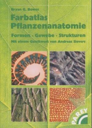 Bowes Bryan G, Farbatlas Pflanzenanatomie - Formen Gewebe Strukturen ...