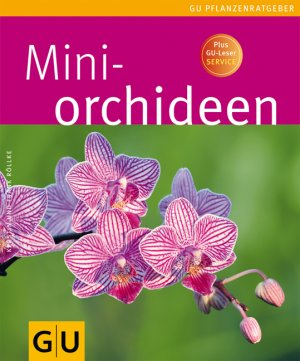 mini orchideen r llke kerstin r llke buch gebraucht. Black Bedroom Furniture Sets. Home Design Ideas
