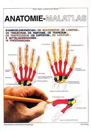 """Anatomie-Malatlas"""" (Kapit Wynn Elson) – Buch gebraucht kaufen ..."""