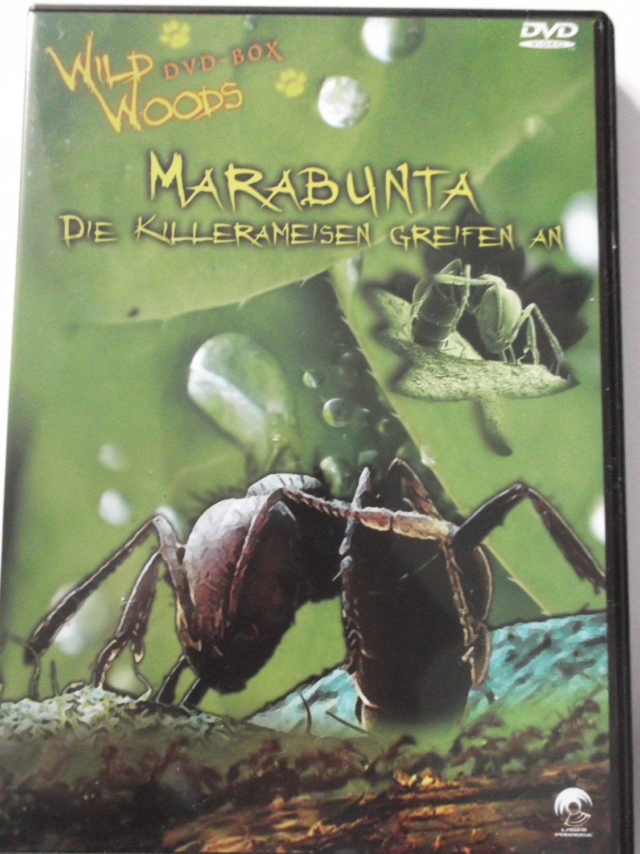 Marabunta – Killerameisen Greifen An