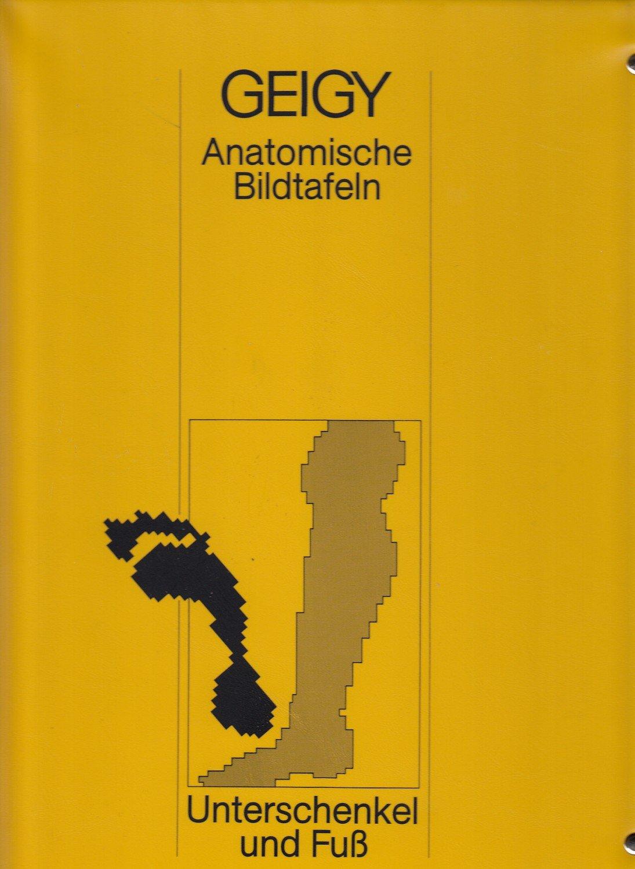 """GEIGY Anatomische Bildtafeln - Unterschenkel und Fuß"""" – Buch ..."""