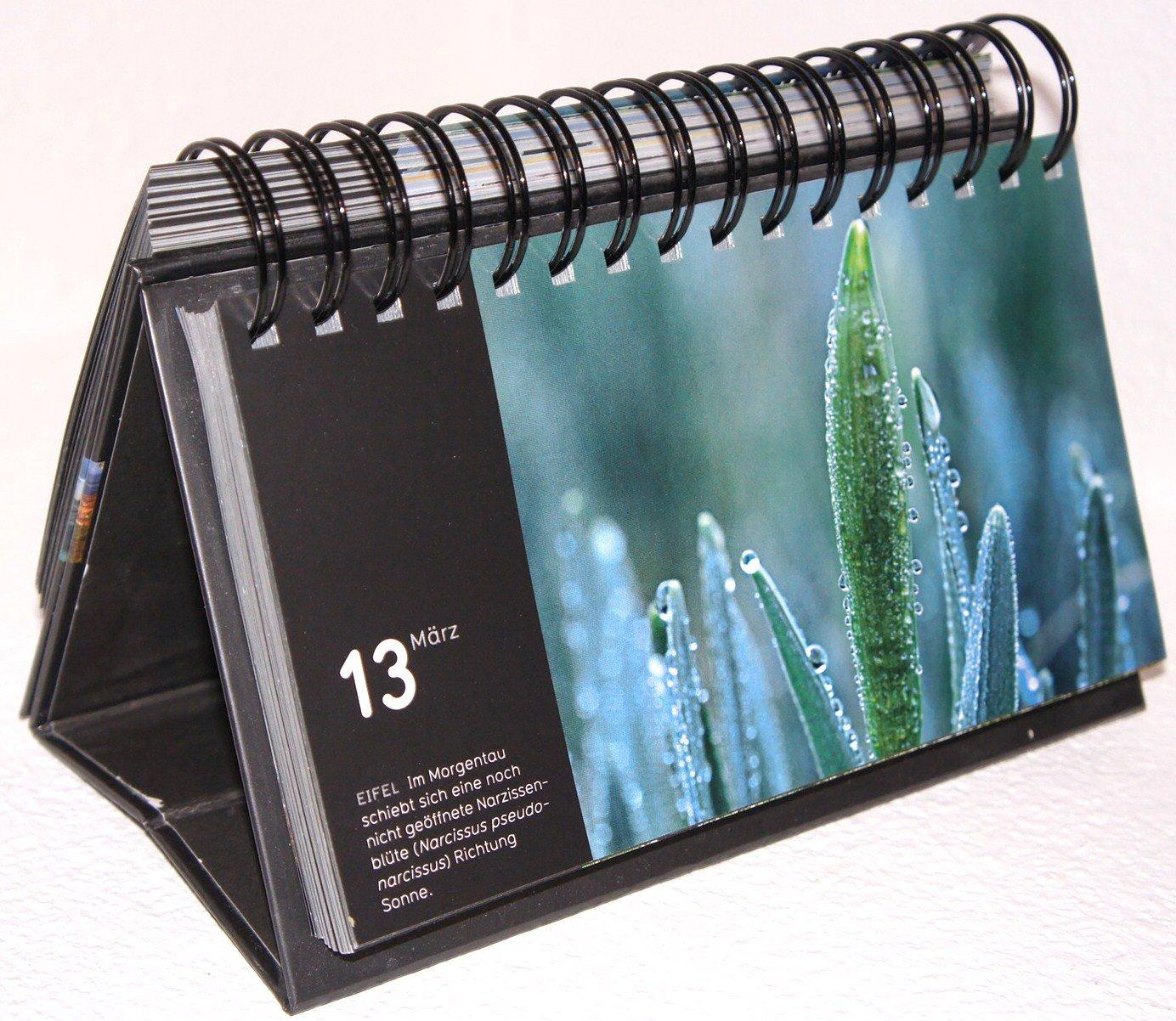 GEO Tischkalender Die Welt in 365 Fotos
