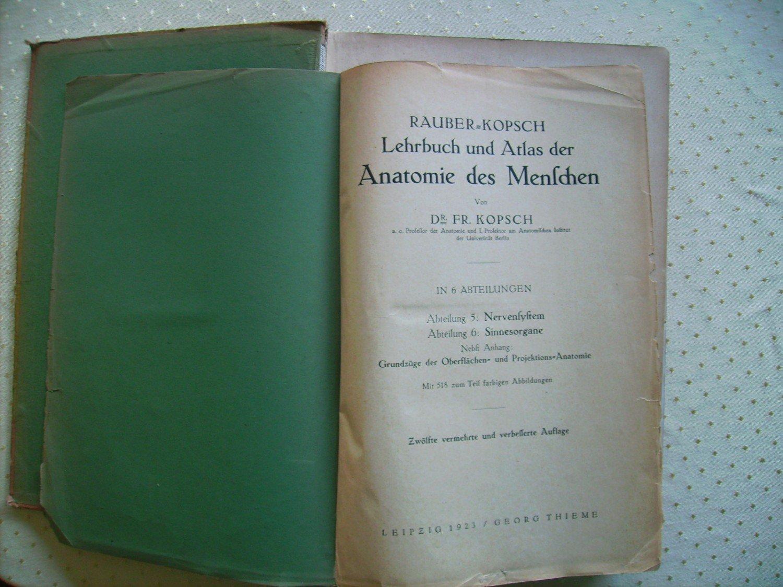 """Lehrbuch und Atlas der Anatomie des Menschen"""" (Kopsch Rauber) – Buch ..."""