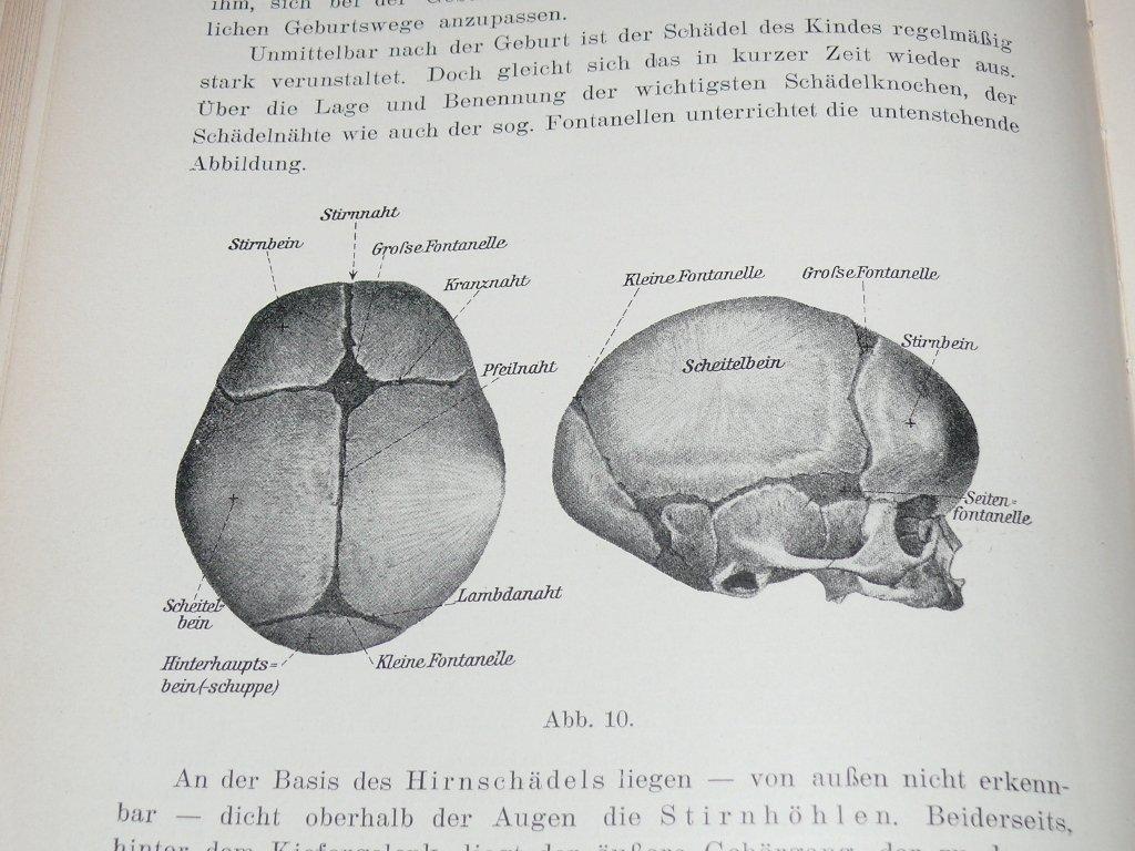 """Lehrbuch der Wöchnerinnen-, Säuglings- und Kleinkinderpflege"""" (Birk ..."""
