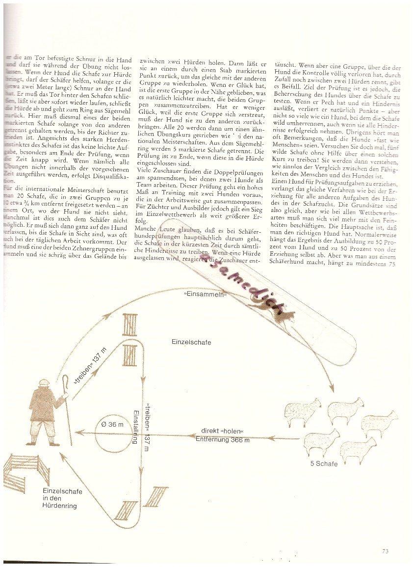 Ziemlich Farbe Buchbilder Bilder - Druckbare Malvorlagen - amaichi.info