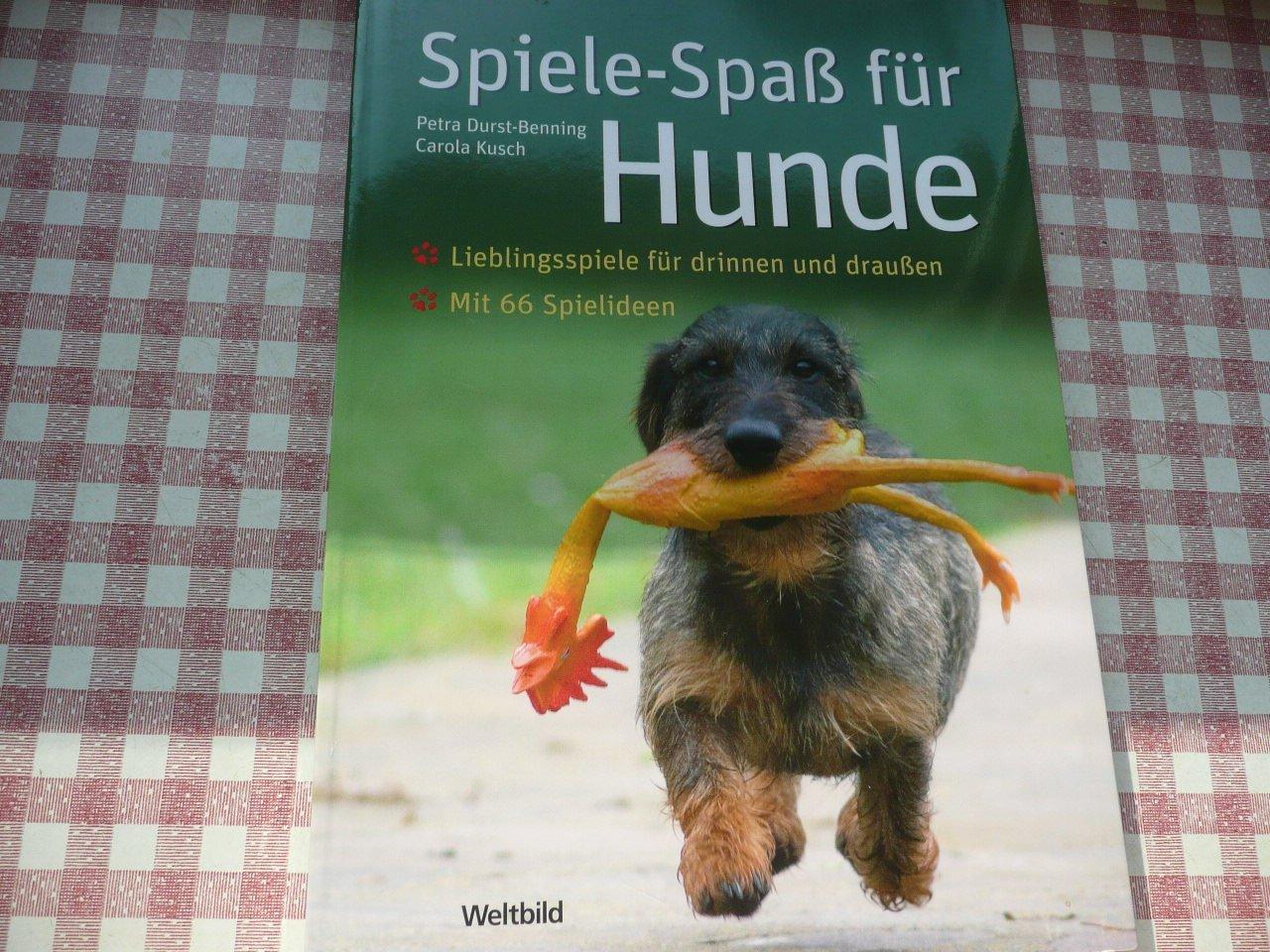 Und Spiel Ideen Für Hunde - REV