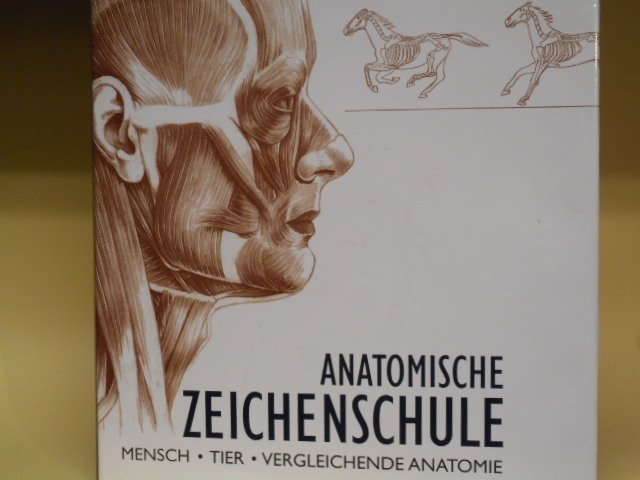 Andras Szunyoghy György Feher, Anatomische Zeichenschule - Mensch ...