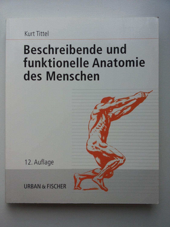 Erfreut Makroskopischen Anatomie Des Weiblichen ...