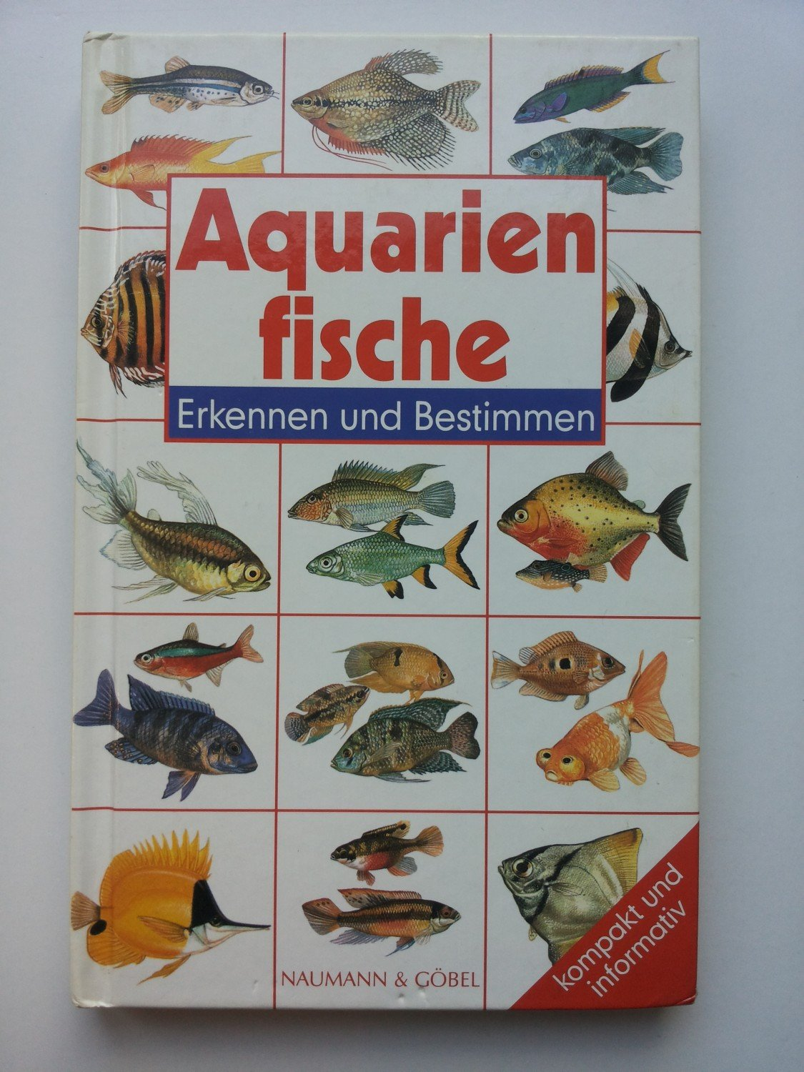 aquarienfische buch gebraucht kaufen a02cve7201zzz. Black Bedroom Furniture Sets. Home Design Ideas