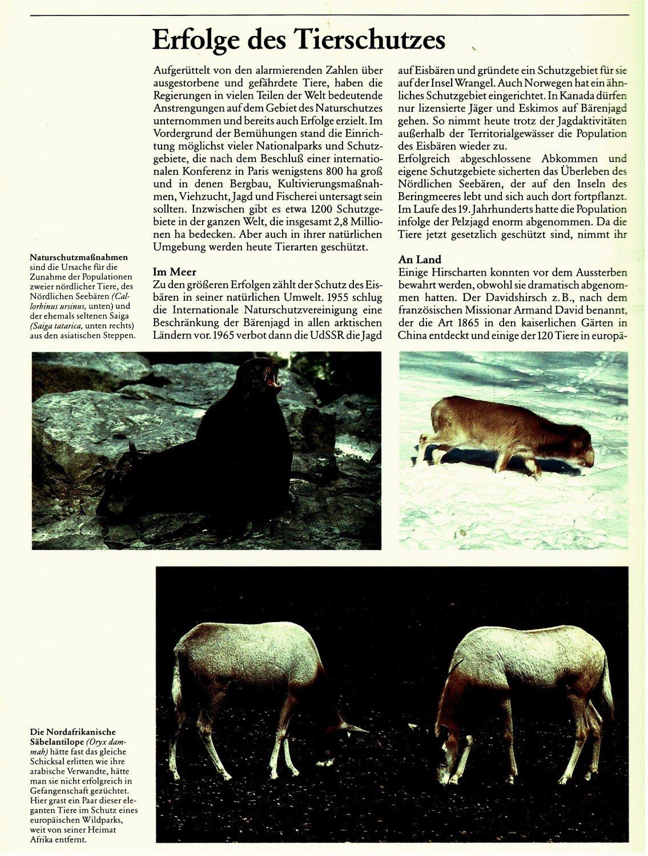 Ungewöhnlich Tiere Anatomie Und Physiologie Zeitgenössisch ...