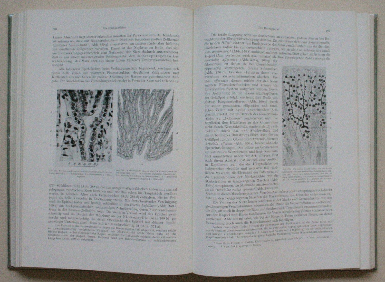 Lehrbuch der Histologie und vergleichenden mikroskopischen Anatomie ...