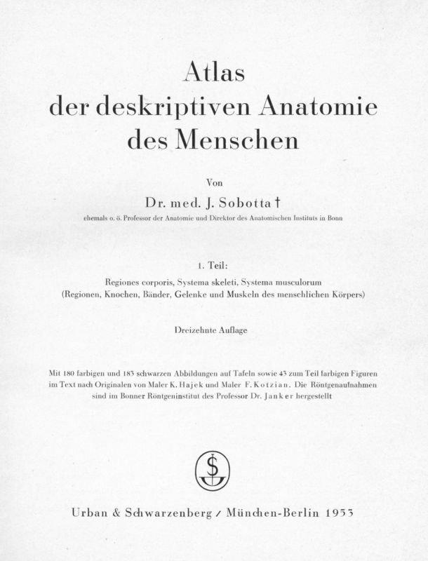 Beste Einfache Anatomie Des Körpers Fotos - Anatomie Von ...