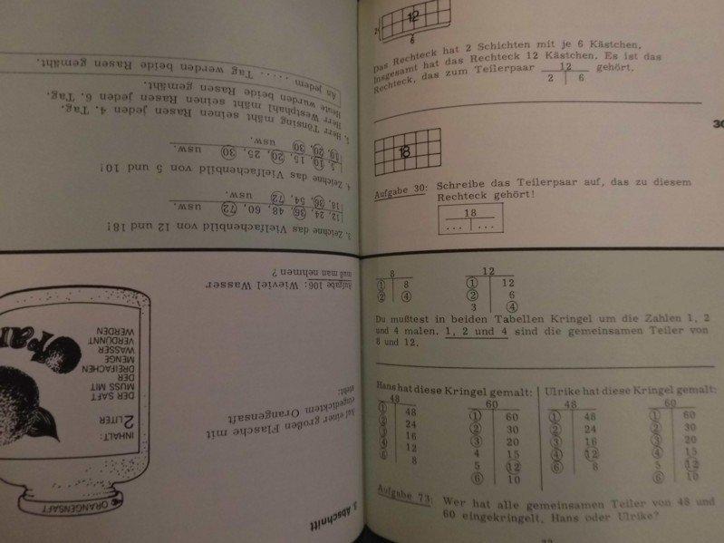 Teiler und Vielfache- Eingreifprogramm - Mathematik 5/6
