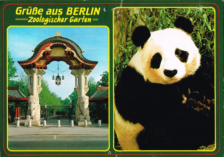 Gebrauchtes Buch U0026ndash; U0026ndash; Postkarte (gelaufen) Zoologischer Garten  Berlin / Briefmarke: ...