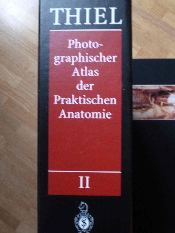 Großartig Anatomie Und Physiologie Labor Praktische Prüfung Fotos ...