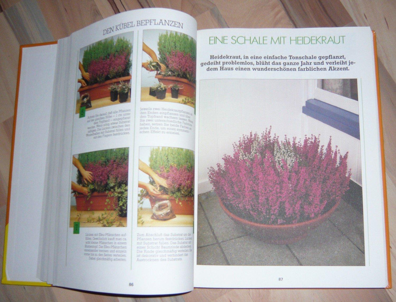 Das Grosse Buch Der Kubel Und Balkonpflanzen Autorenkollektiv