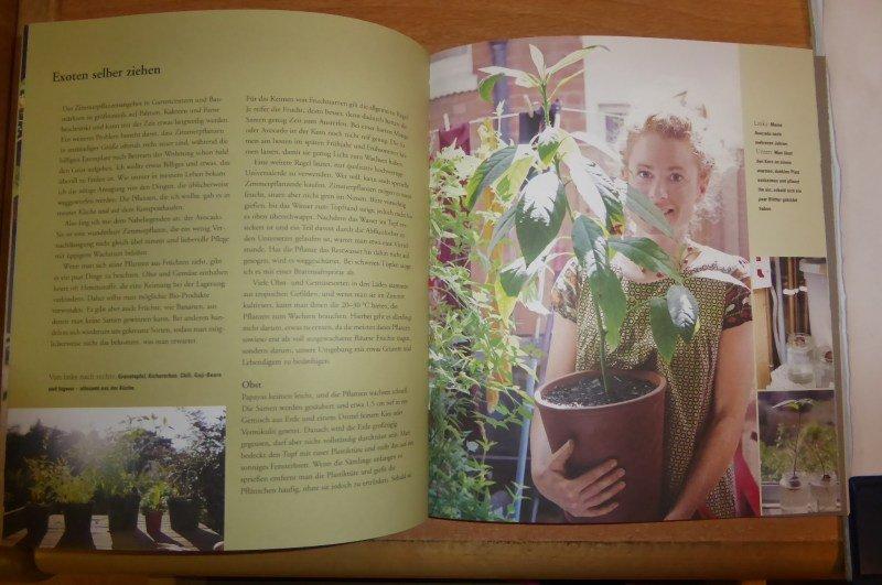 Schöne Gärten für Sparsame - Wie man tolle Gärten anlegt, ohne ...