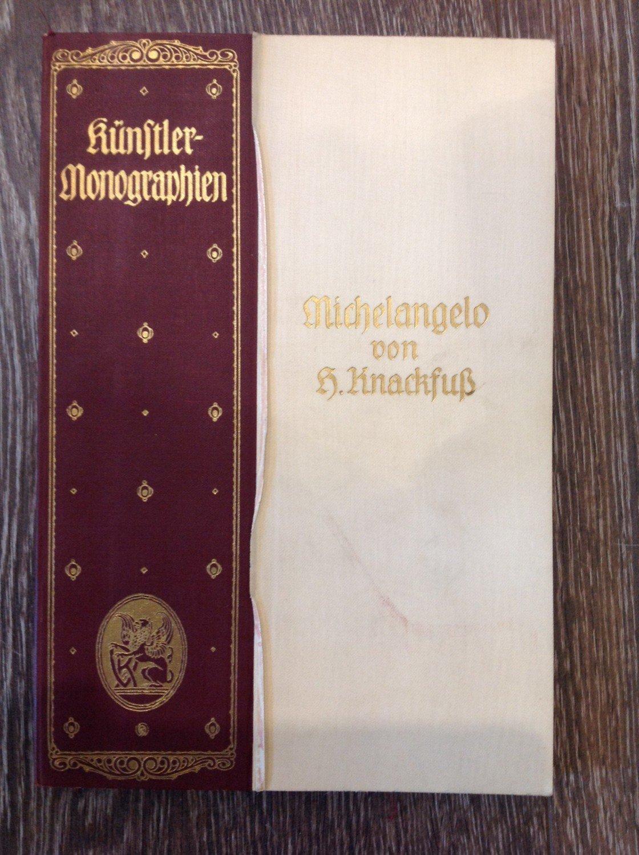 michelangelo knstler monographie