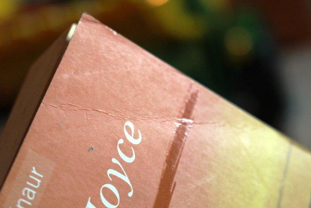 "Das Haus am Meer"" (Mary Joyce) – Buch gebraucht kaufen – A02hNvnB01ZZS"