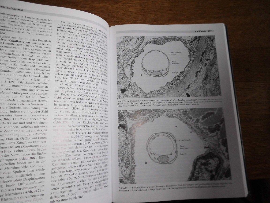 Cytologie, Histologie und mikroskopische Anatomie des Menschen ...