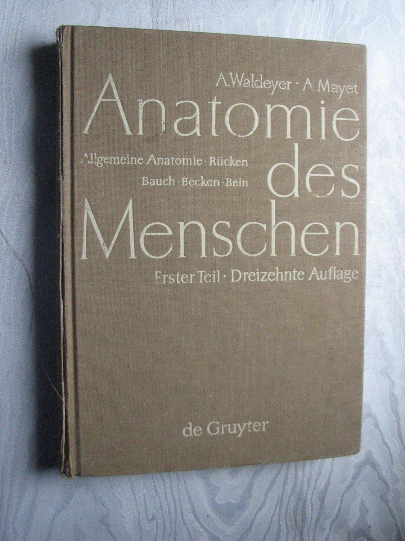 """Anatomie des Menschen Band 1"""" (Waldeyer Anton Mayet) – Buch ..."""