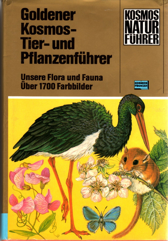 Erfreut Tierfarbbild Galerie - Framing Malvorlagen ...