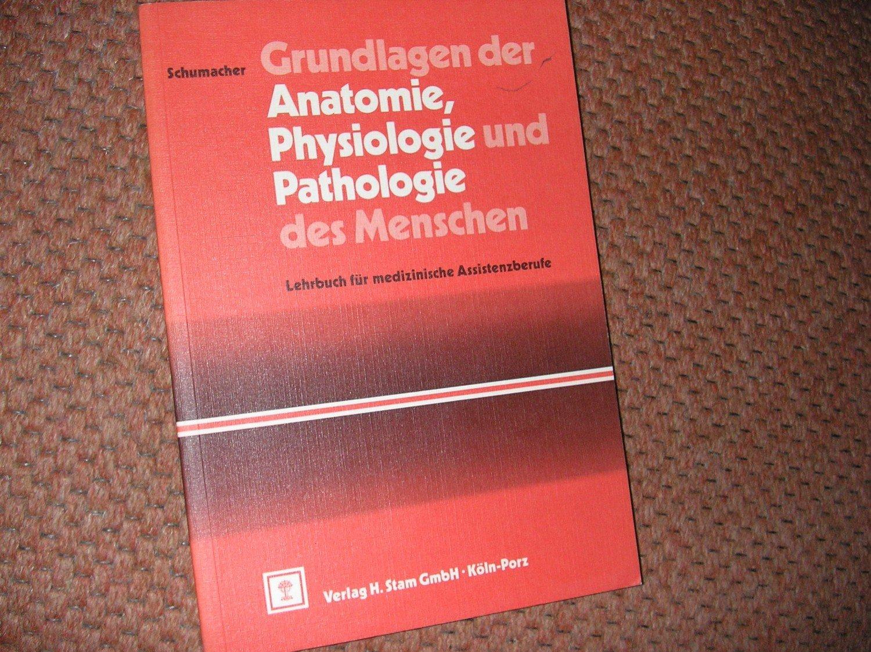 Groß Die Grundlagen Der Anatomie Und Physiologie Bilder ...